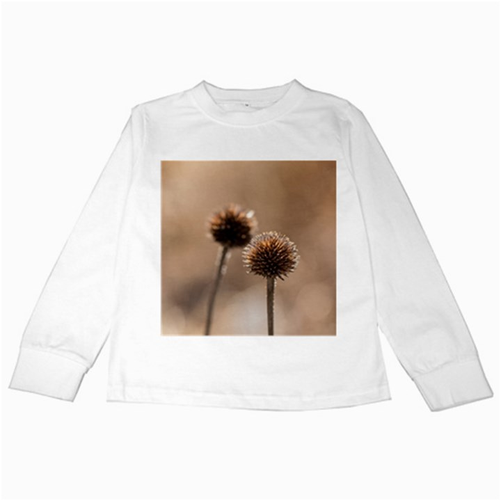 Withered Globe Thistle In Autumn Macro Kids Long Sleeve T-Shirts