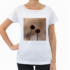 Withered Globe Thistle In Autumn Macro Women s Loose Fit T Shirt (white)