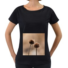 Withered Globe Thistle In Autumn Macro Women s Loose Fit T Shirt (black)