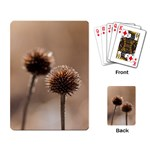 Withered Globe Thistle In Autumn Macro Playing Card Back