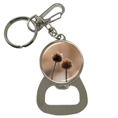 Withered Globe Thistle In Autumn Macro Bottle Opener Key Chains