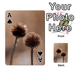 Withered Globe Thistle In Autumn Macro Playing Cards 54 Designs  Front - SpadeA