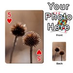 Withered Globe Thistle In Autumn Macro Playing Cards 54 Designs  Front - Heart5