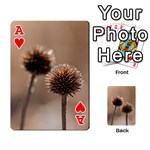 Withered Globe Thistle In Autumn Macro Playing Cards 54 Designs  Front - HeartA