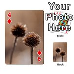 Withered Globe Thistle In Autumn Macro Playing Cards 54 Designs  Front - Diamond4