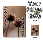 Withered Globe Thistle In Autumn Macro Playing Cards 54 Designs  Front - Joker1
