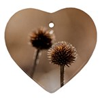 Withered Globe Thistle In Autumn Macro Heart Ornament (2 Sides) Back