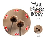Withered Globe Thistle In Autumn Macro Playing Cards 54 (Round)  Front - Heart9