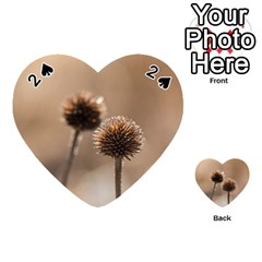 Withered Globe Thistle In Autumn Macro Playing Cards 54 (Heart)
