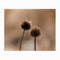 Withered Globe Thistle In Autumn Macro Small Glasses Cloth (2-Side)