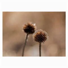 Withered Globe Thistle In Autumn Macro Large Glasses Cloth (2-Side)