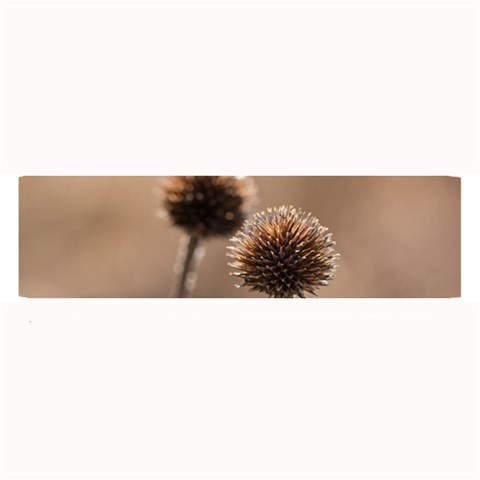 Withered Globe Thistle In Autumn Macro Large Bar Mats