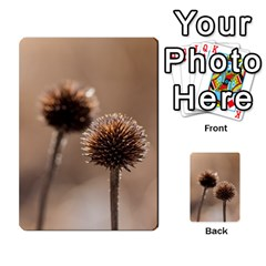 Withered Globe Thistle In Autumn Macro Multi-purpose Cards (Rectangle)