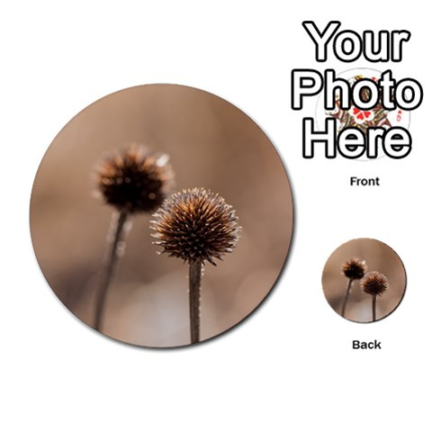 Withered Globe Thistle In Autumn Macro Multi-purpose Cards (Round)