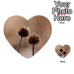 Withered Globe Thistle In Autumn Macro Multi Purpose Cards (heart)