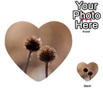 Withered Globe Thistle In Autumn Macro Multi-purpose Cards (Heart)  Back 45