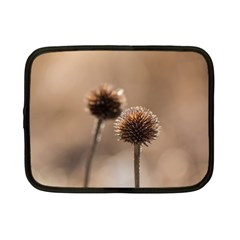 Withered Globe Thistle In Autumn Macro Netbook Case (Small)