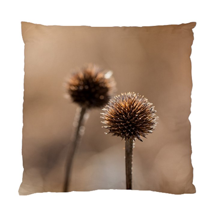 Withered Globe Thistle In Autumn Macro Standard Cushion Case (One Side)