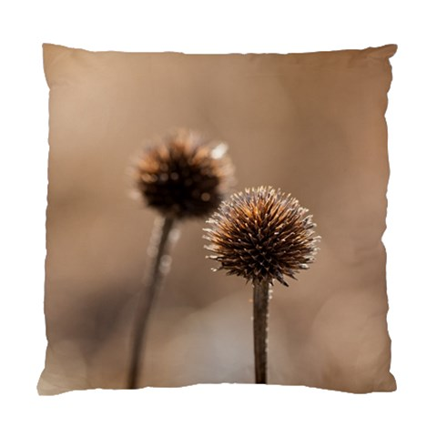 Withered Globe Thistle In Autumn Macro Standard Cushion Case (Two Sides)