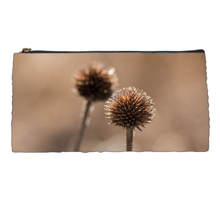 Withered Globe Thistle In Autumn Macro Pencil Cases