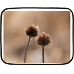 Withered Globe Thistle In Autumn Macro Double Sided Fleece Blanket (Mini)  35 x27 Blanket Back