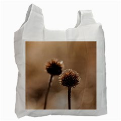 Withered Globe Thistle In Autumn Macro Recycle Bag (One Side)