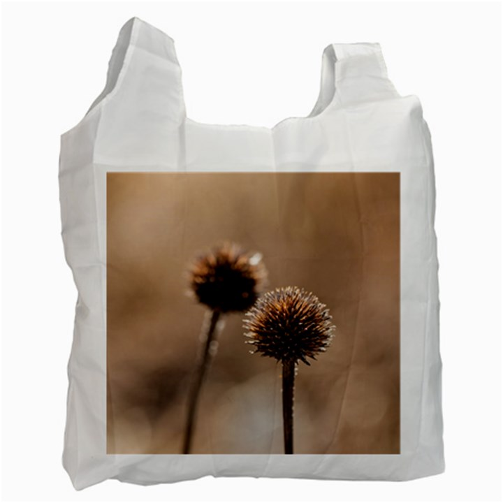 Withered Globe Thistle In Autumn Macro Recycle Bag (Two Side)