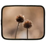 Withered Globe Thistle In Autumn Macro Netbook Case (XXL)  Front