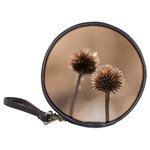 Withered Globe Thistle In Autumn Macro Classic 20-CD Wallets Front
