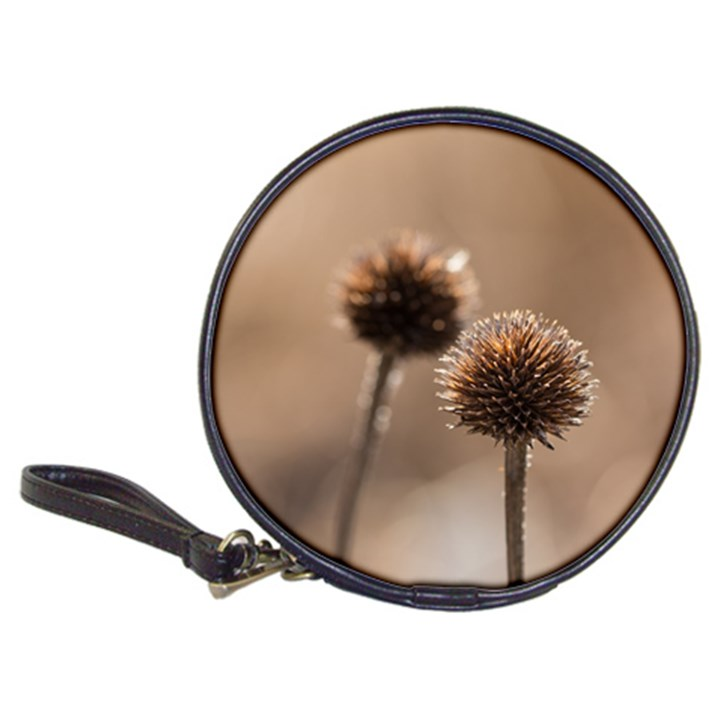 Withered Globe Thistle In Autumn Macro Classic 20-CD Wallets