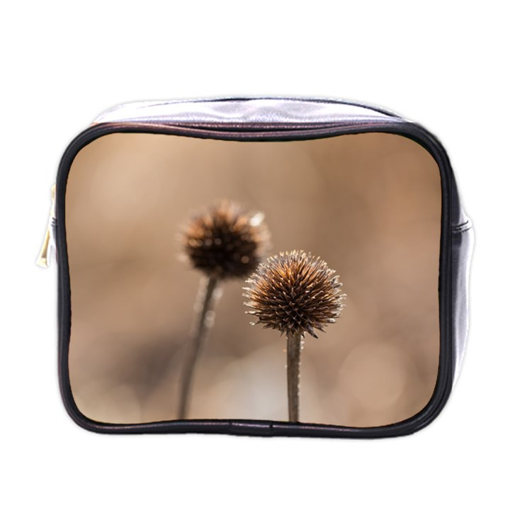 Withered Globe Thistle In Autumn Macro Mini Toiletries Bags