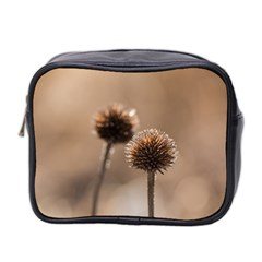 Withered Globe Thistle In Autumn Macro Mini Toiletries Bag 2-Side