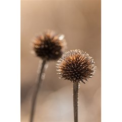 Withered Globe Thistle In Autumn Macro 5 5  X 8 5  Notebooks