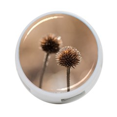 Withered Globe Thistle In Autumn Macro 4-Port USB Hub (One Side)