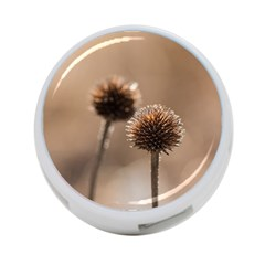 Withered Globe Thistle In Autumn Macro 4 Port Usb Hub (two Sides)