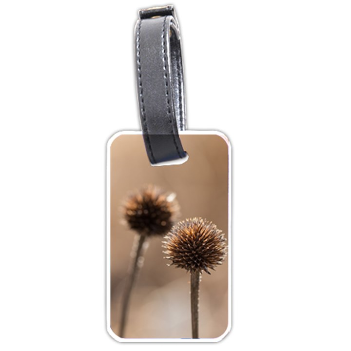Withered Globe Thistle In Autumn Macro Luggage Tags (One Side)