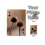 Withered Globe Thistle In Autumn Macro Playing Cards 54 (Mini)  Front - SpadeA