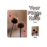 Withered Globe Thistle In Autumn Macro Playing Cards 54 (Mini)  Front - HeartQ