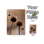 Withered Globe Thistle In Autumn Macro Playing Cards 54 (Mini)  Front - Spade7