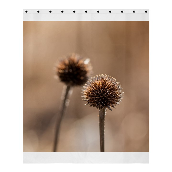 Withered Globe Thistle In Autumn Macro Shower Curtain 60  x 72  (Medium)