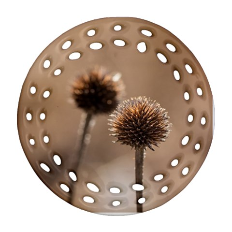 Withered Globe Thistle In Autumn Macro Round Filigree Ornament (2Side)