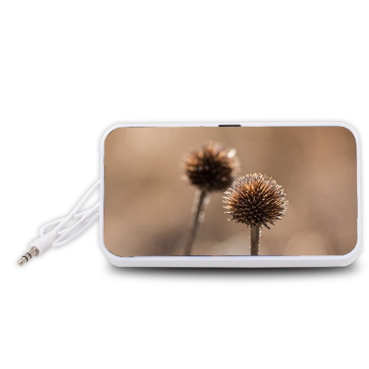 Withered Globe Thistle In Autumn Macro Portable Speaker (White)