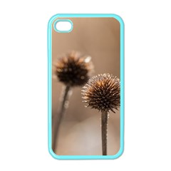 Withered Globe Thistle In Autumn Macro Apple Iphone 4 Case (color)