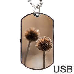 Withered Globe Thistle In Autumn Macro Dog Tag USB Flash (One Side)
