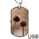 Withered Globe Thistle In Autumn Macro Dog Tag USB Flash (Two Sides)  Front