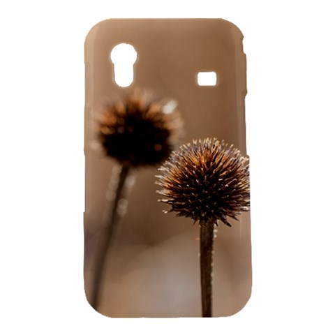 Withered Globe Thistle In Autumn Macro Samsung Galaxy Ace S5830 Hardshell Case