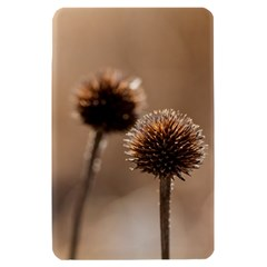 Withered Globe Thistle In Autumn Macro Kindle Fire (1st Gen) Hardshell Case