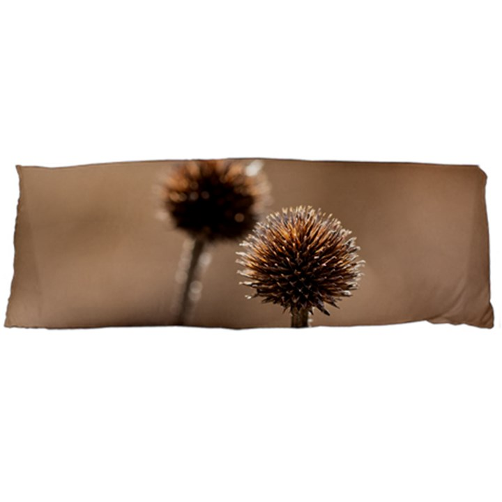Withered Globe Thistle In Autumn Macro Body Pillow Case Dakimakura (Two Sides)