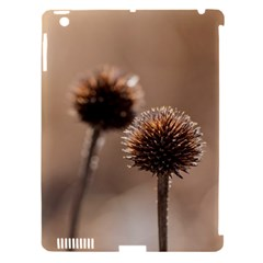 Withered Globe Thistle In Autumn Macro Apple iPad 3/4 Hardshell Case (Compatible with Smart Cover)