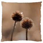 Withered Globe Thistle In Autumn Macro Large Cushion Case (Two Sides) Back